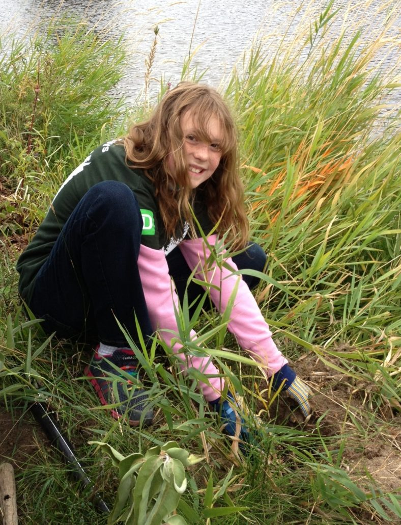 "Caring for the Land – ""Pitching in to restore Ellis Creek"""